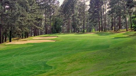Foxfire Resort & Golf Club - Grey Fox Course