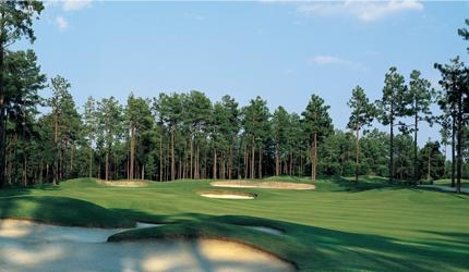 Pinewild Country Club - Holly Course