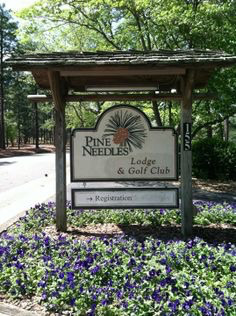 Pine Needles Southern Pines NC